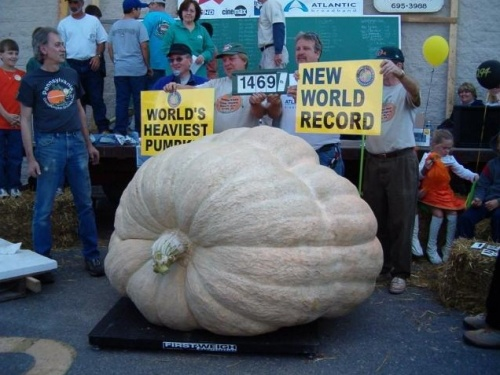 """Largest Pumpkin"" prize winner - 1,469 lbs"